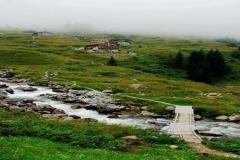 www.kuzeymavi.com