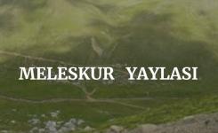 Meleskur Yaylası